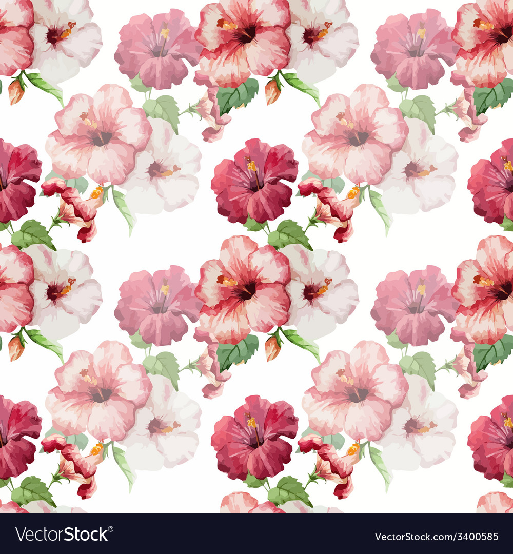 Hibiscus3 vector | Price: 1 Credit (USD $1)