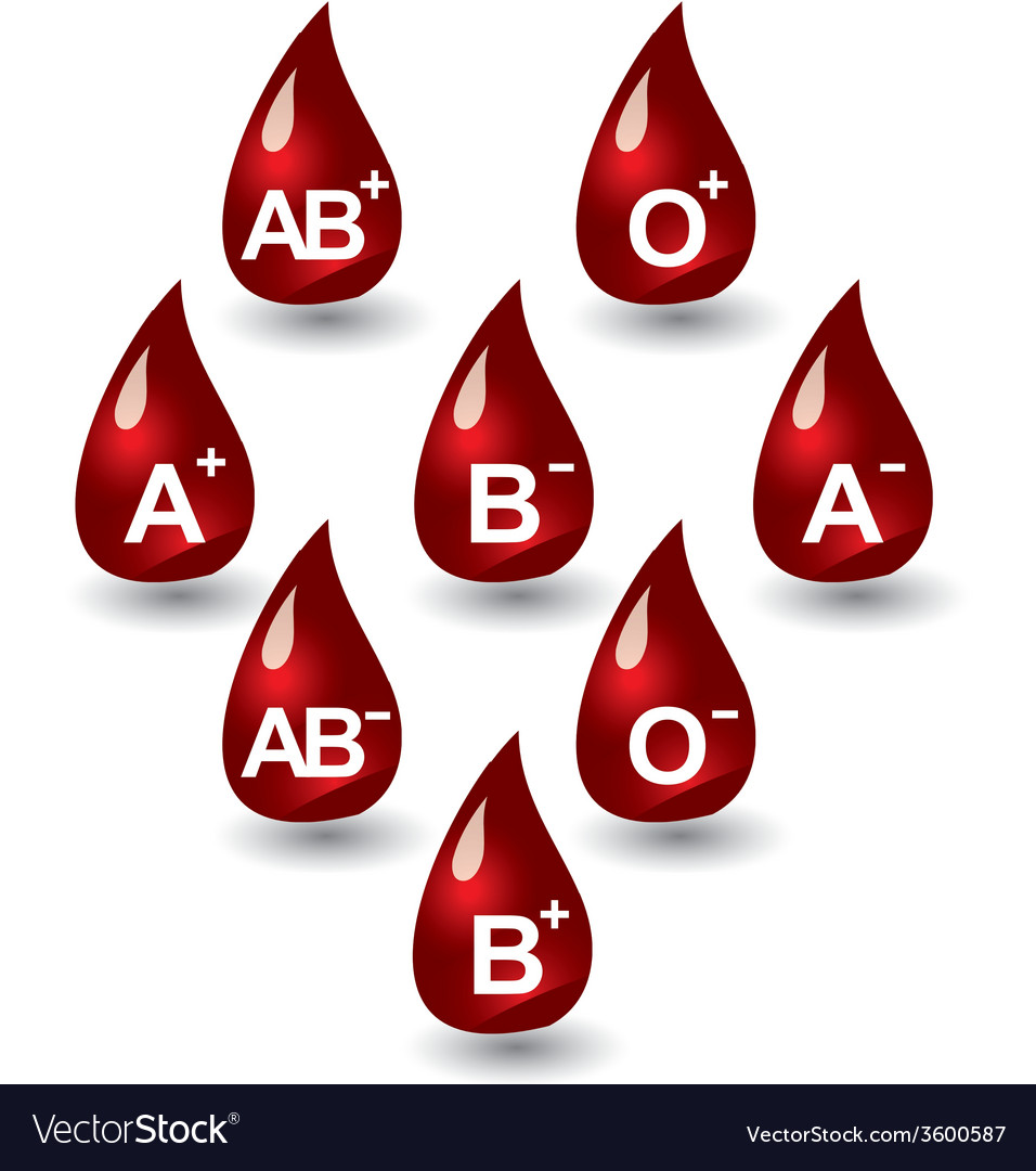 Blood groups vector | Price: 1 Credit (USD $1)