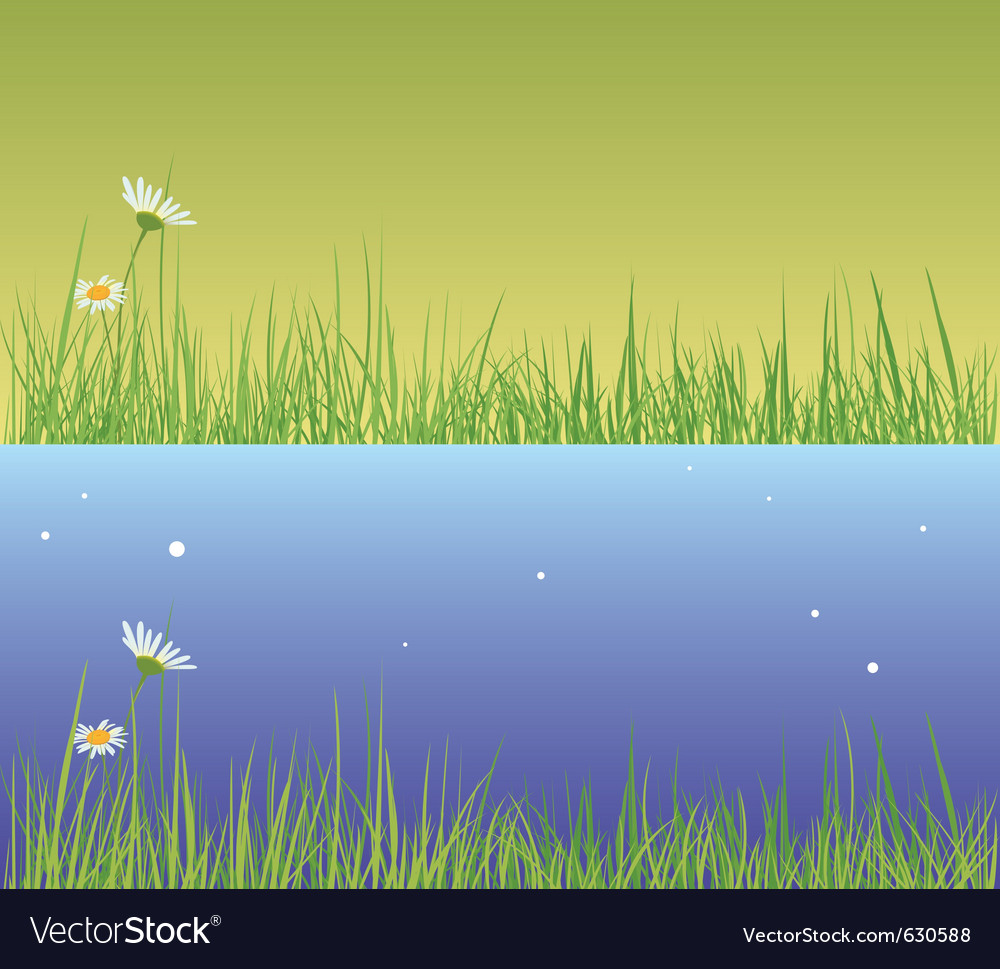 Field grass day and evening vector | Price: 1 Credit (USD $1)