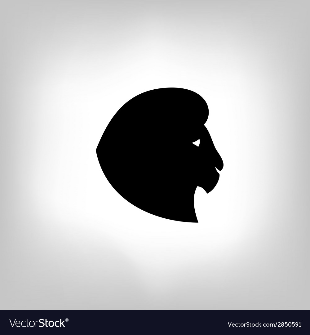 Stylized lion head - vector | Price: 1 Credit (USD $1)