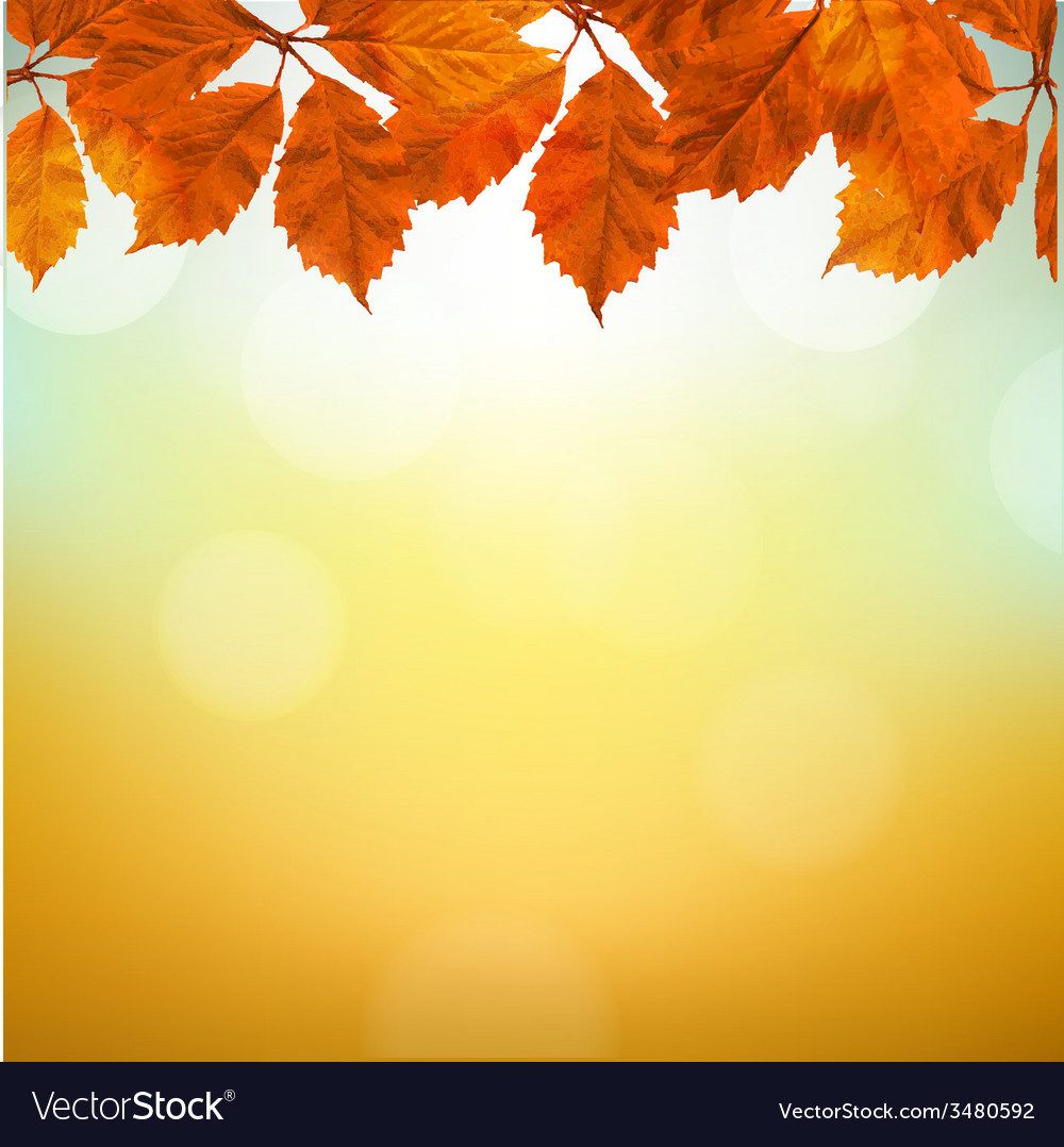 Vintage autumn background with leaves vector | Price: 1 Credit (USD $1)