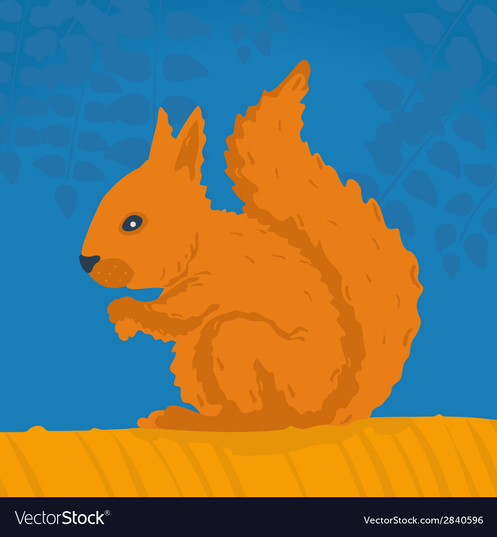 Squirrel sitting on a branch vector | Price: 1 Credit (USD $1)