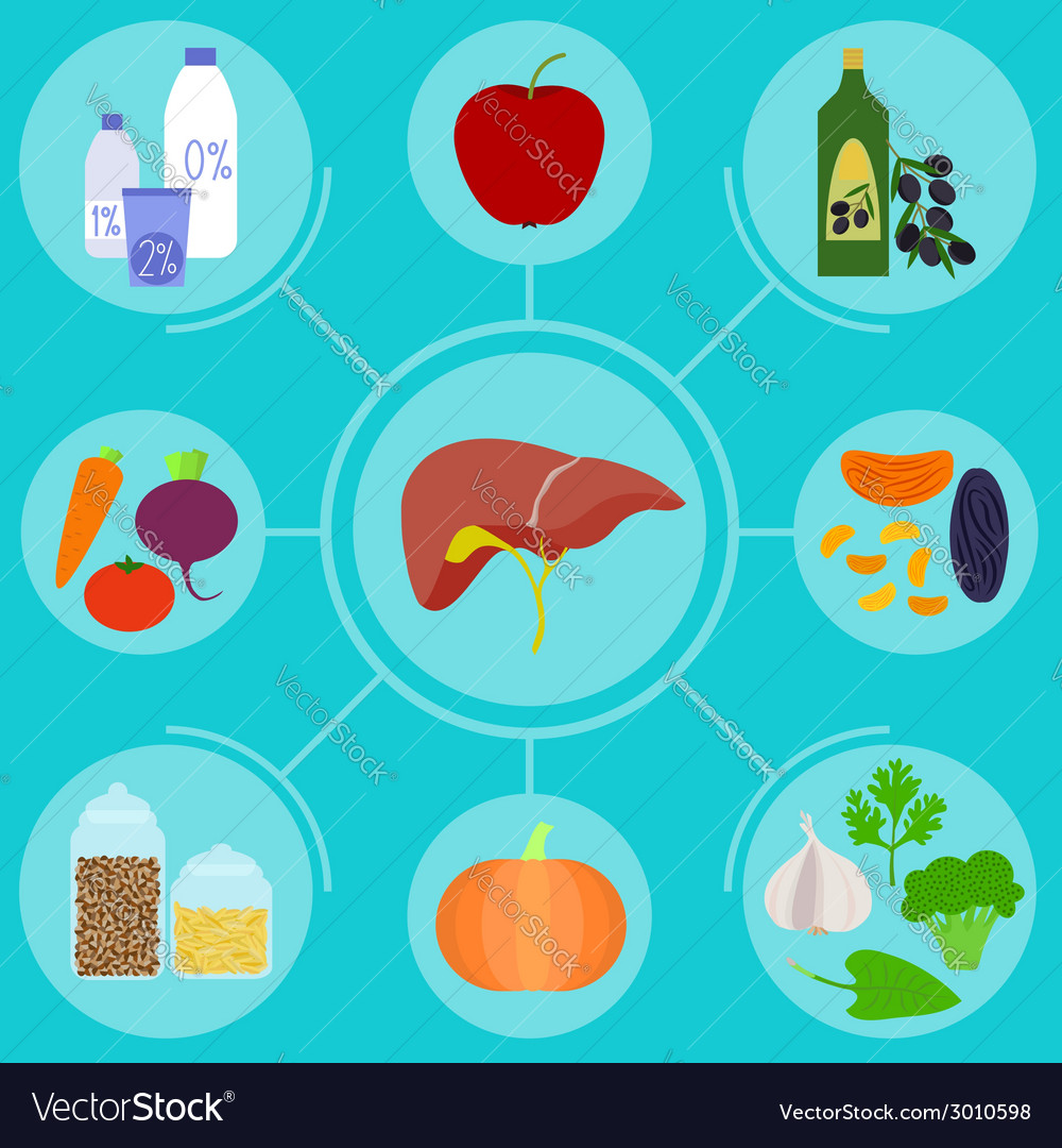 Infographics of food helpful for healthy liver vector | Price: 1 Credit (USD $1)