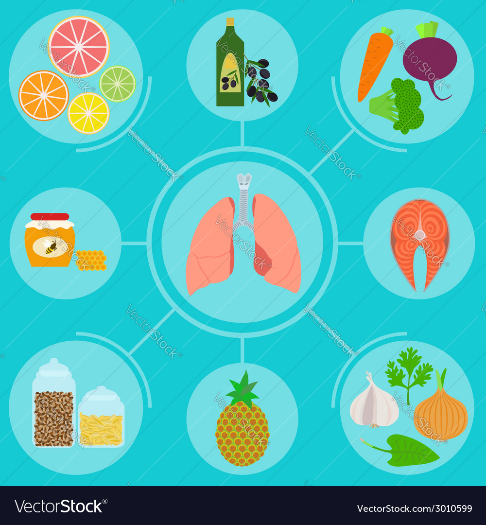 Infographics of food helpful for healthy lungs vector | Price: 1 Credit (USD $1)