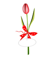 A fresh red tulip with red ribbon vector