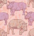 Rhino hippo vector