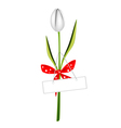 A fresh white tulip with red ribbon vector