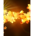 Autumn leaves on colorful plus eps10 vector