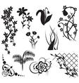 Floral design elements - set vector