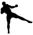 Low thai kick vector