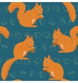 Seamless pattern with squirrels vector