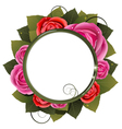 Red and pink roses bouquet vector