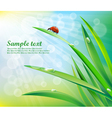 Sunny background with grass vector