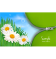 Nature background with spring flowers vector
