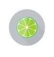 Lime icon vector