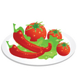 Vegetable plate vector