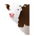 Of a cows head vector