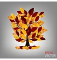 Autumn tree with colorful leaves vector