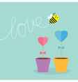 Heart stick flower in the pot and bee with love vector