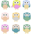 Colorful owls isolated on white vector