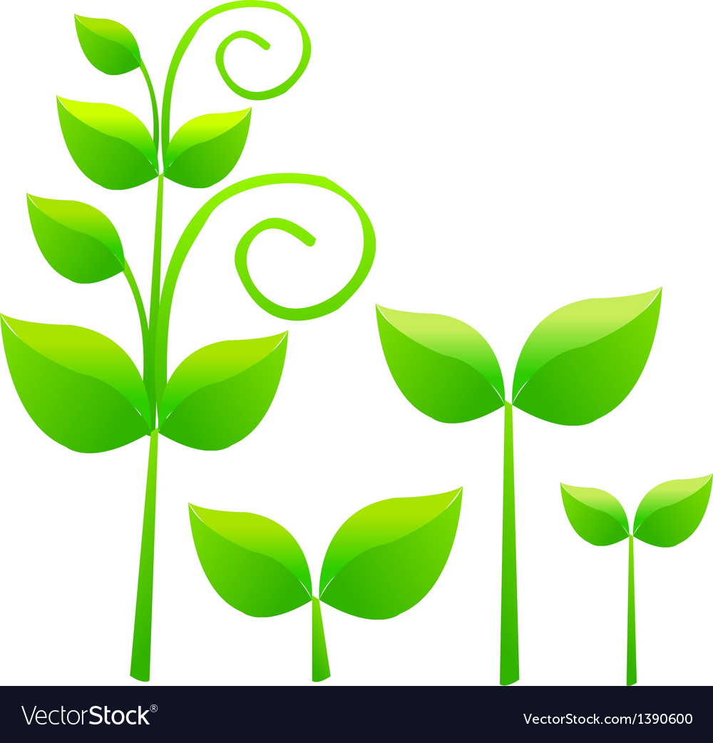A view of a plant vector | Price: 1 Credit (USD $1)