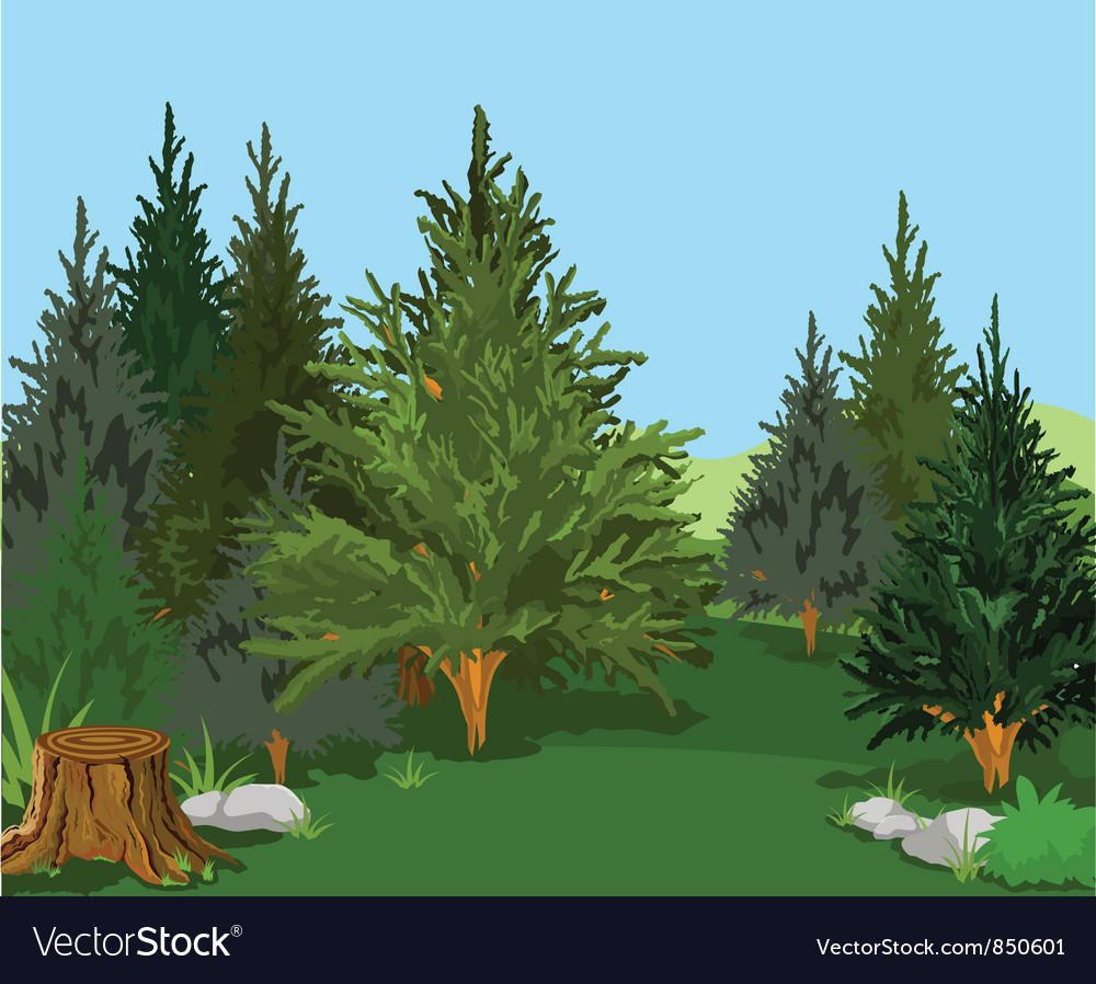 Forest 003a vector | Price: 1 Credit (USD $1)