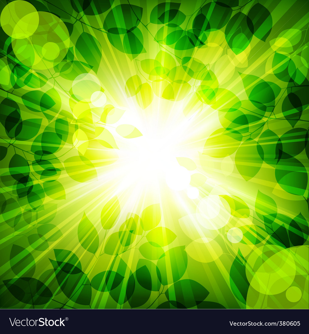 Sun in green leaves vector | Price: 1 Credit (USD $1)