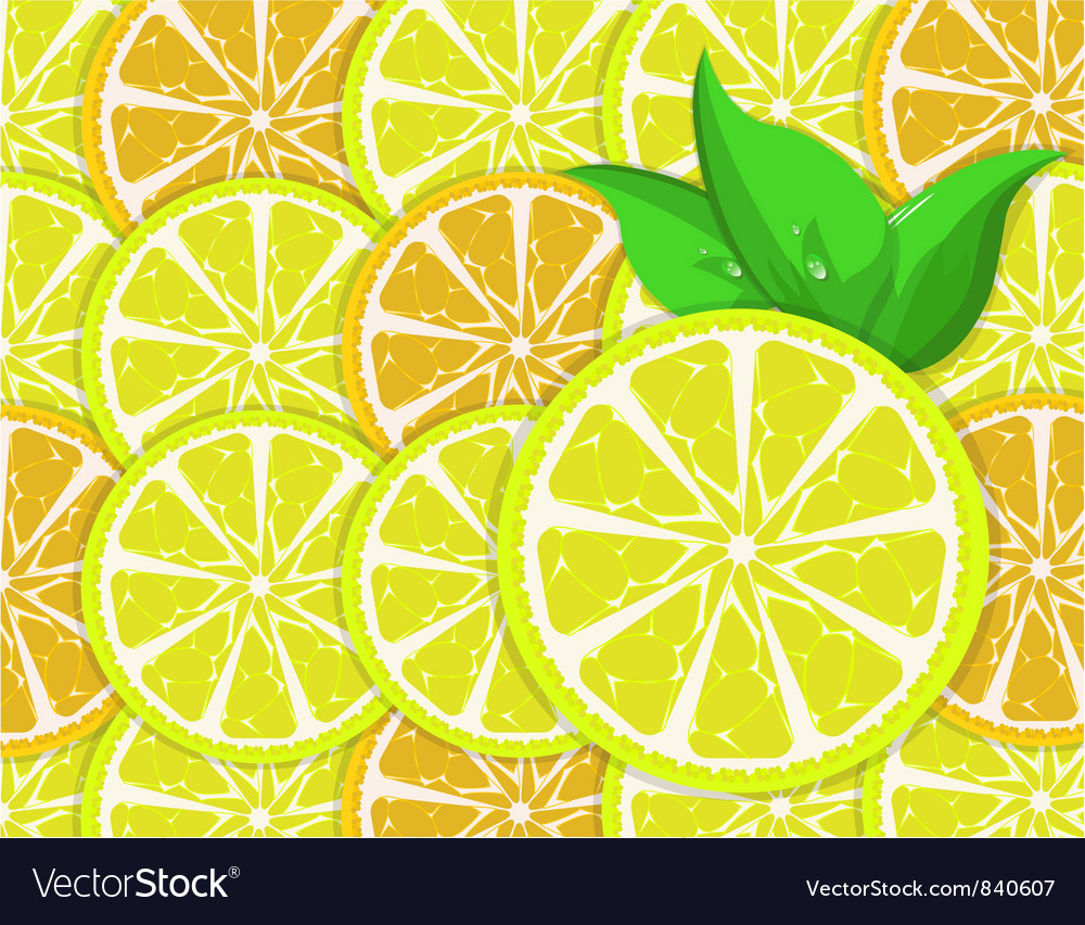 Orange and lemon slices vector | Price: 1 Credit (USD $1)