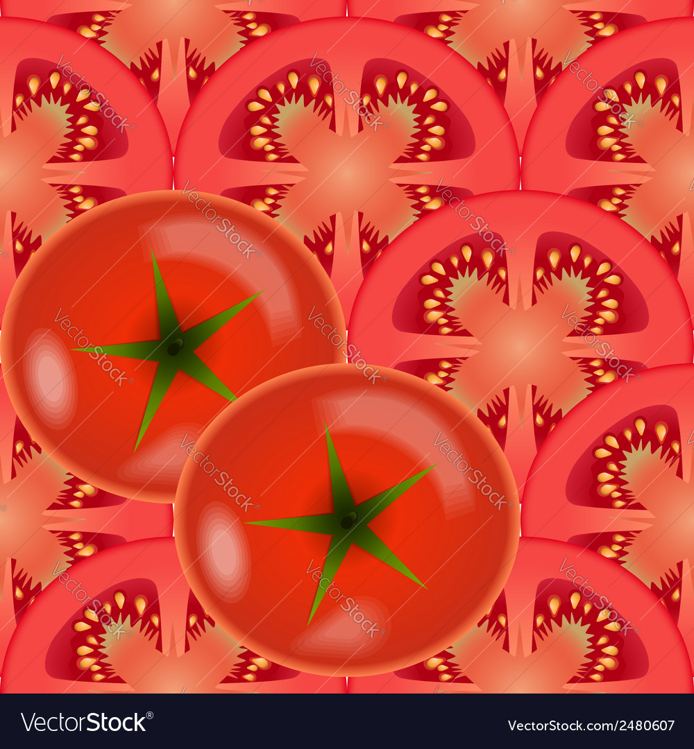 Tomato vegetables vector | Price: 1 Credit (USD $1)