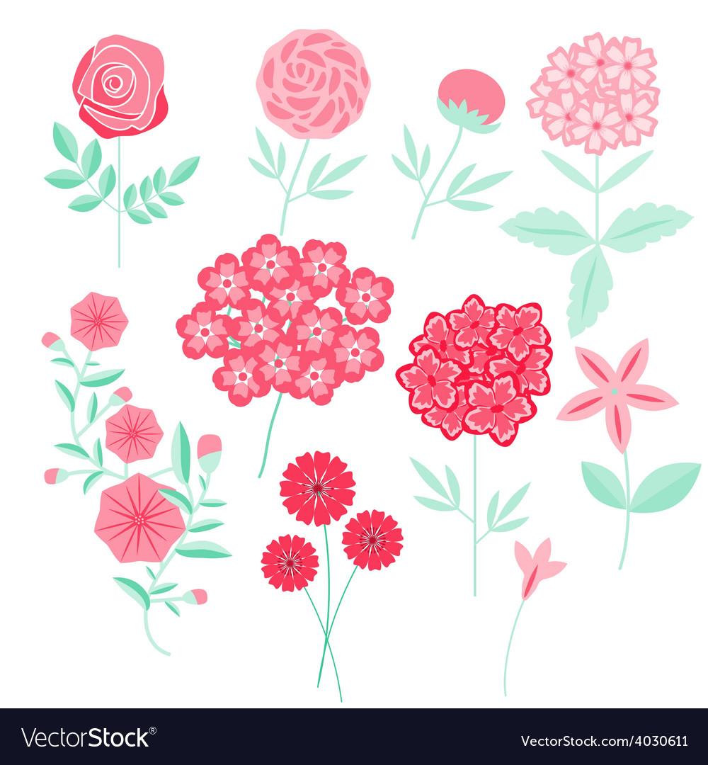 Flowers set vector | Price: 1 Credit (USD $1)