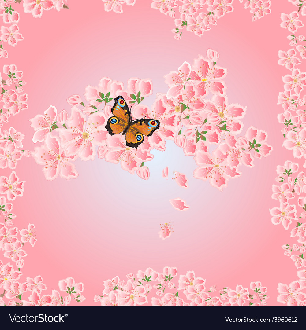 Seamless texture cherry blossoms and butterfly sea vector | Price: 1 Credit (USD $1)