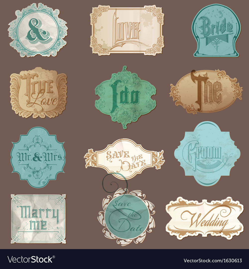 Calligraphic wedding elements in vintage frames vector | Price: 1 Credit (USD $1)