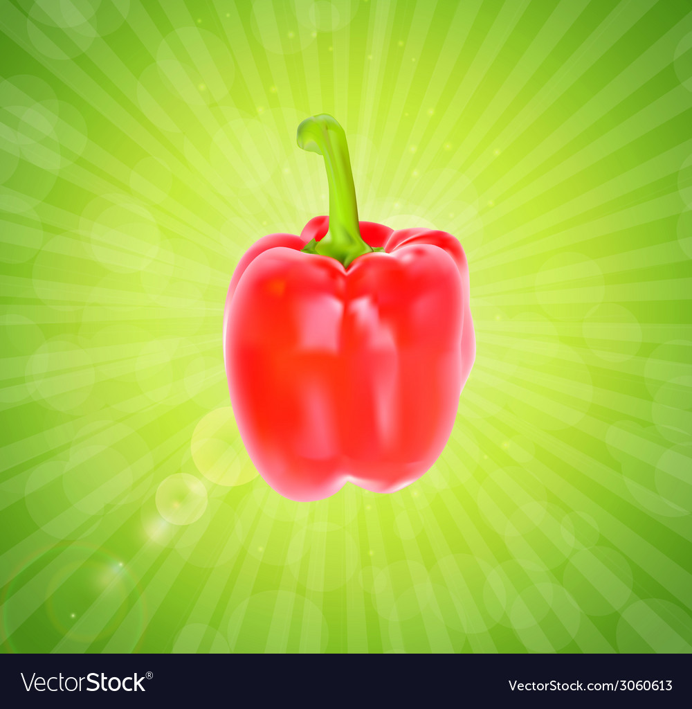 Colored fresh sweet pepper isolated on white vector | Price: 1 Credit (USD $1)