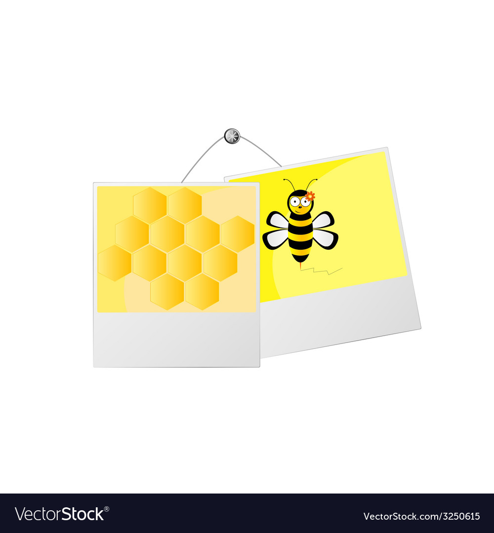 Sweet and cute bee and honey vector | Price: 1 Credit (USD $1)