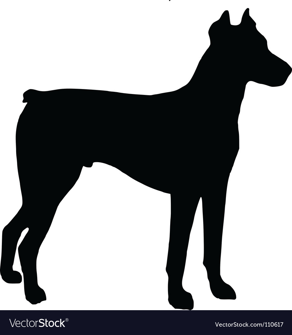 Doberman pinscher vector | Price: 1 Credit (USD $1)