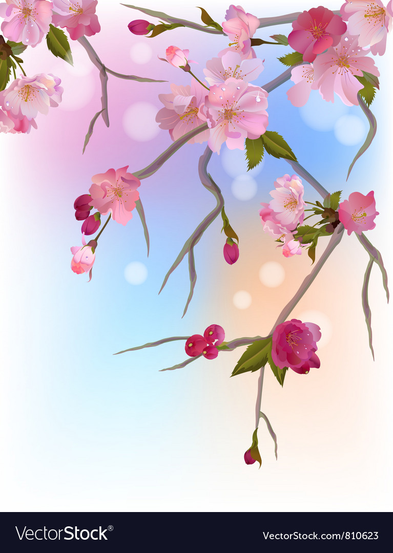 Background with gentle sakura branches vector | Price: 1 Credit (USD $1)
