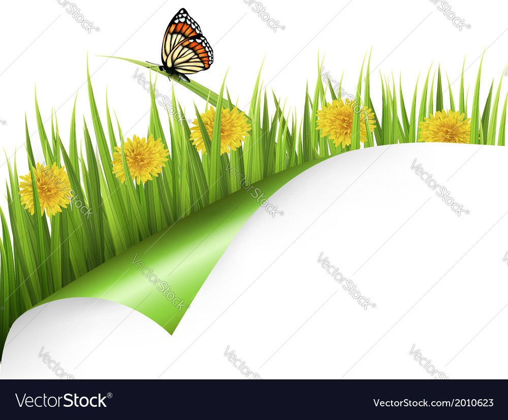 Summer background with dandelions and a butterfly vector   Price: 1 Credit (USD $1)