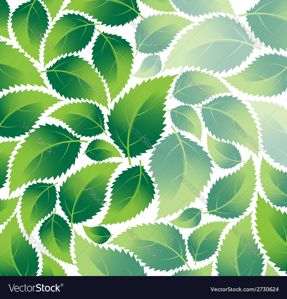 Green foliage vector | Price: 1 Credit (USD $1)
