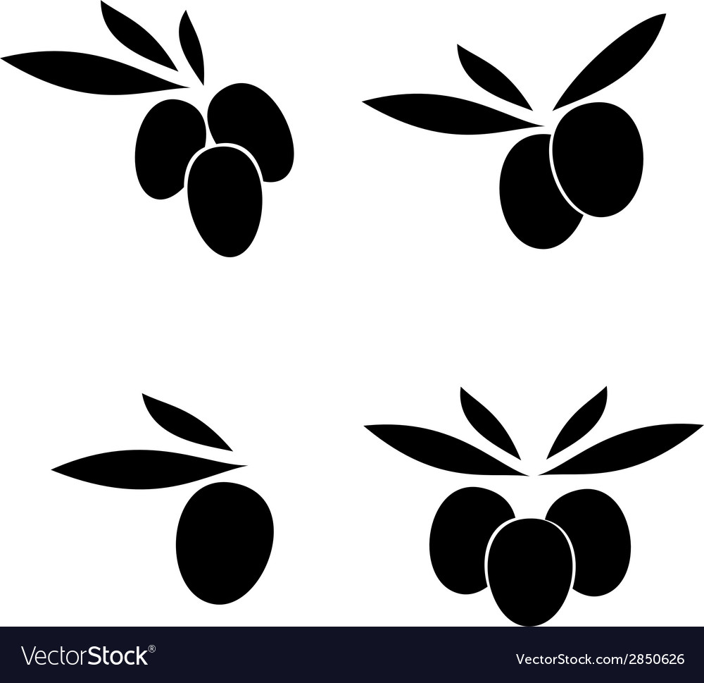 Olive with leaves label vector | Price: 1 Credit (USD $1)