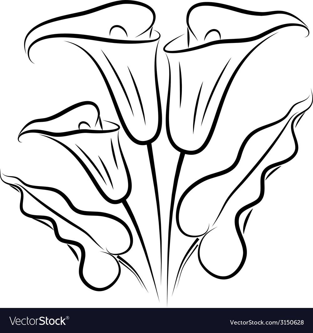 Callas silhouette vector | Price: 1 Credit (USD $1)