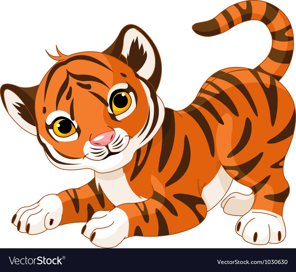 Playful tiger cub vector | Price: 3 Credit (USD $3)