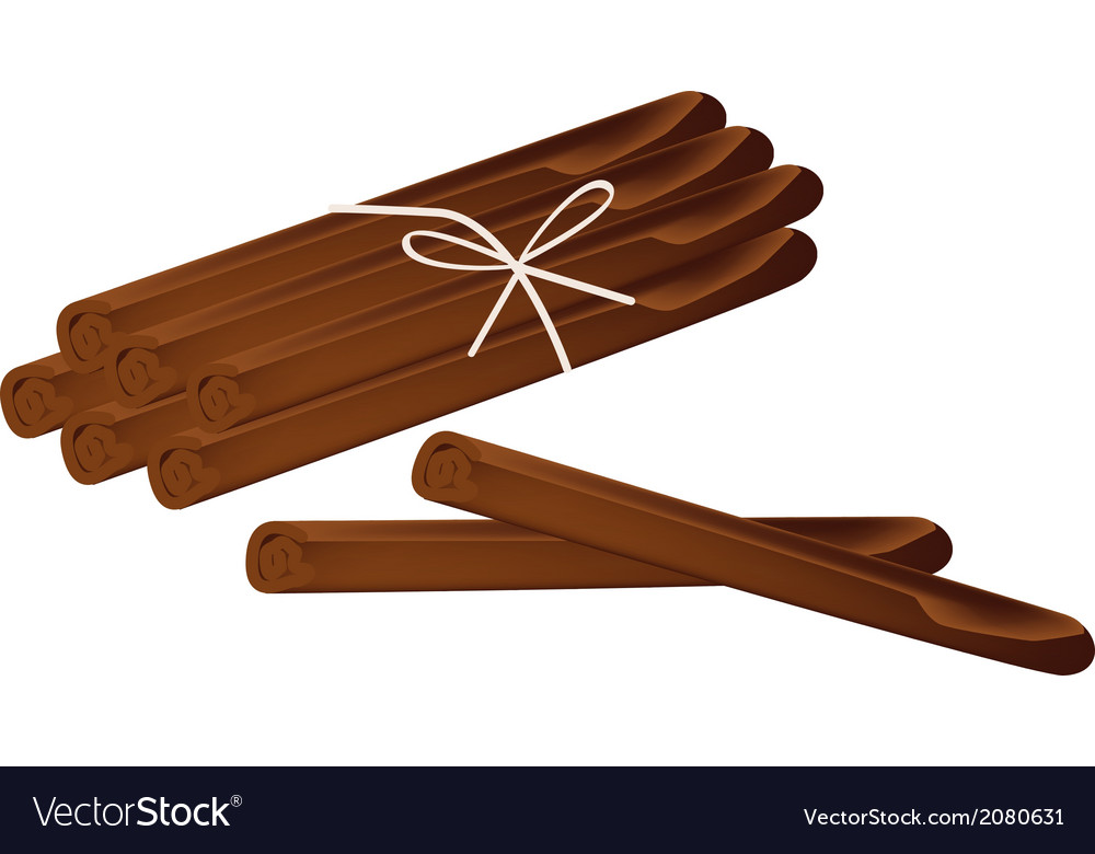 Stack of dried cinnamon sticks on white background vector | Price: 1 Credit (USD $1)