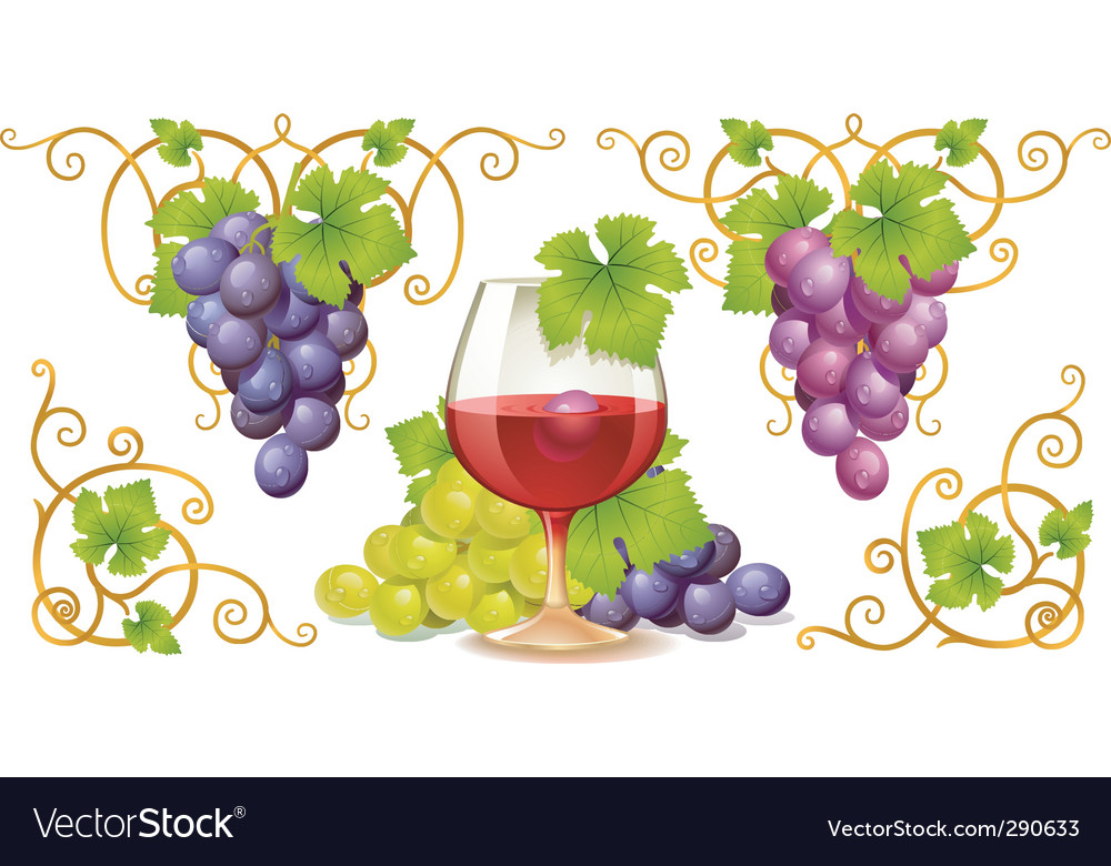 Grape elements vector | Price: 1 Credit (USD $1)