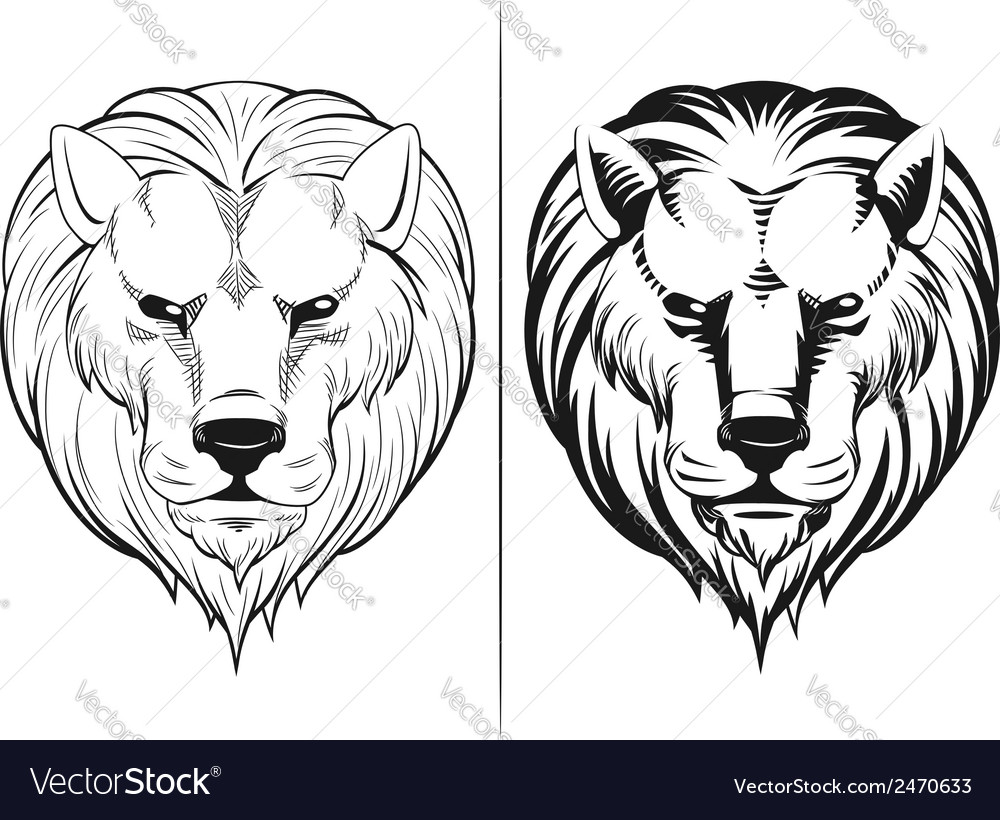 Sketch of lion head vector | Price: 1 Credit (USD $1)