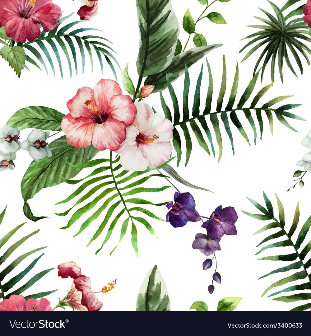 Tropics4 vector | Price: 1 Credit (USD $1)