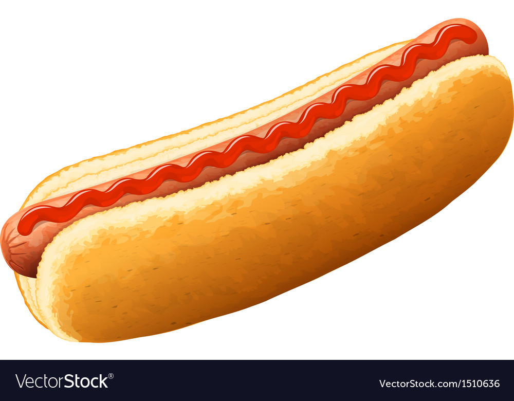 Hot dog with ketchup vector | Price: 1 Credit (USD $1)