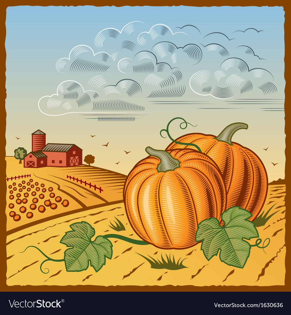 Landscape with pumpkins vector | Price: 3 Credit (USD $3)
