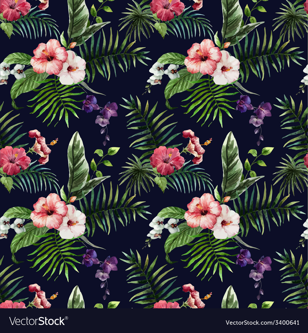 Tropics5 vector | Price: 1 Credit (USD $1)