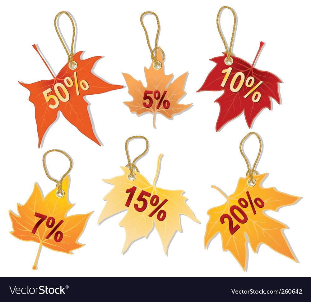 Separate autumn leaves discount vector | Price: 1 Credit (USD $1)