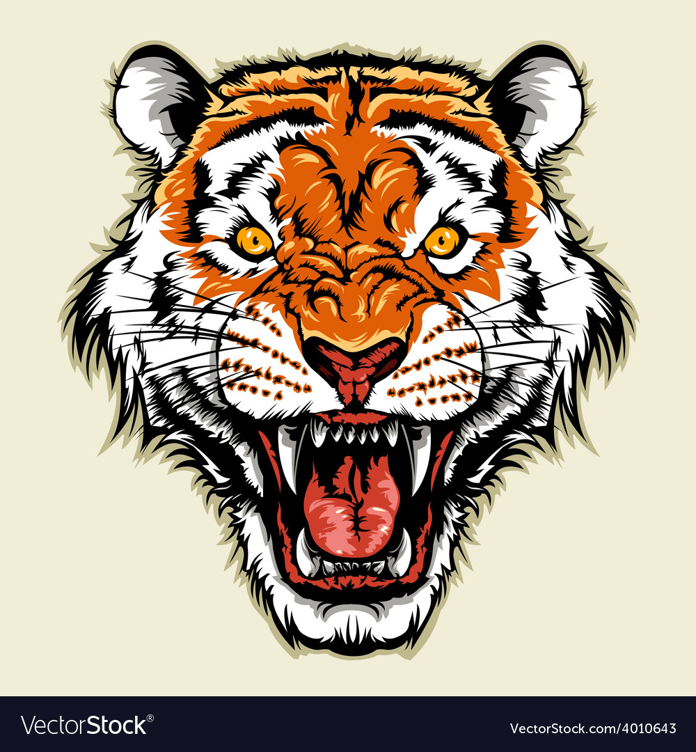 Angry tiger head vector | Price: 3 Credit (USD $3)
